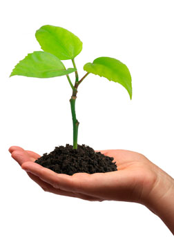 Growing your business – 3 Key Tips